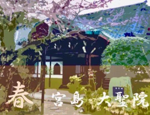 季節を感じて自分を癒すヨガ・リトリート@宮島・大聖院